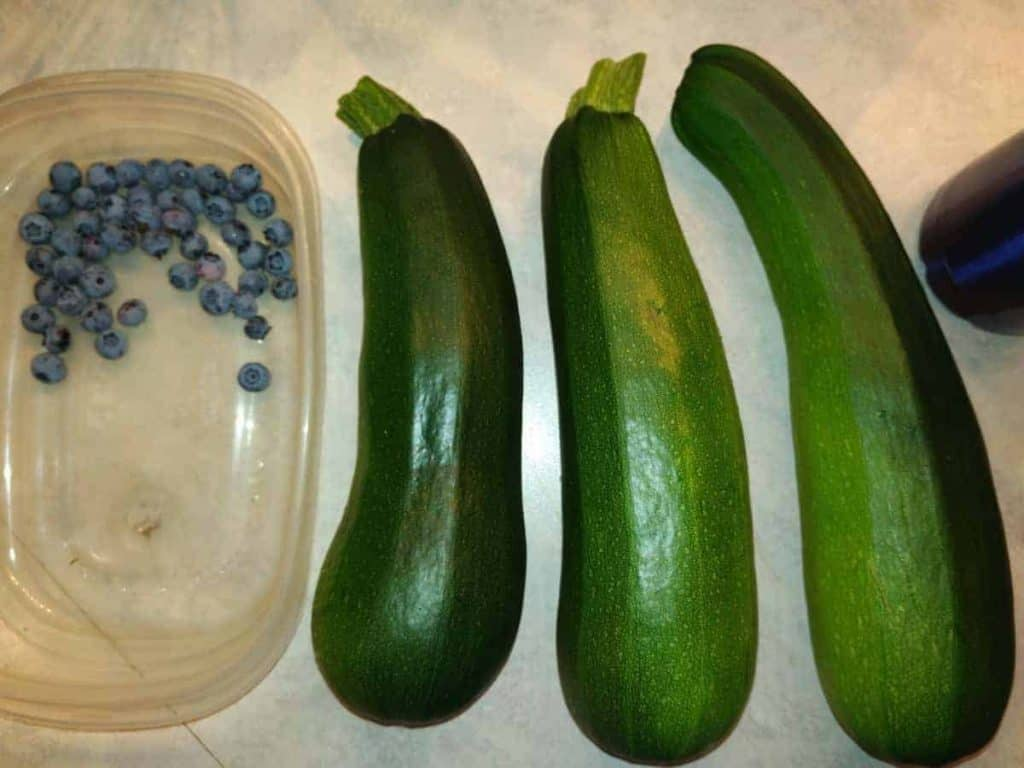 A few harvested Organic Black Beauty Zucchini's grown by Farmer Jer are shown in this file photo.